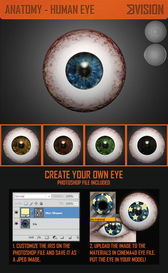 Realistic Human Eye 3D Model - 3DOcean Item for Sale