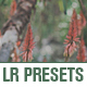 10 Modern Lightroom Presets - GraphicRiver Item for Sale