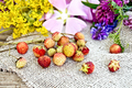 Strawberries with flowers on burlap - PhotoDune Item for Sale