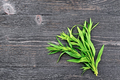 Tarragon leaves on black board - PhotoDune Item for Sale