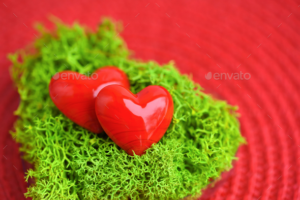 Valentines Day background with hearts. Hearts in green moss on r - Stock Photo - Images