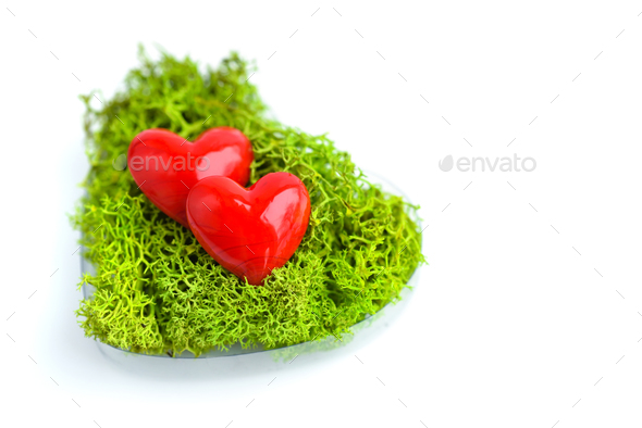 Hearts in green moss on white background - Stock Photo - Images