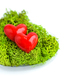 Hearts in green moss on white background - PhotoDune Item for Sale
