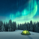 Northern lights in winter forest - PhotoDune Item for Sale
