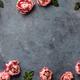 Border of beautiful pink tulips on dark shabby chic background - PhotoDune Item for Sale