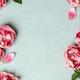 Border of beautiful pink tulips on blue shabby chic background - PhotoDune Item for Sale