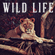 10 Wildlife Photoshop Action - GraphicRiver Item for Sale