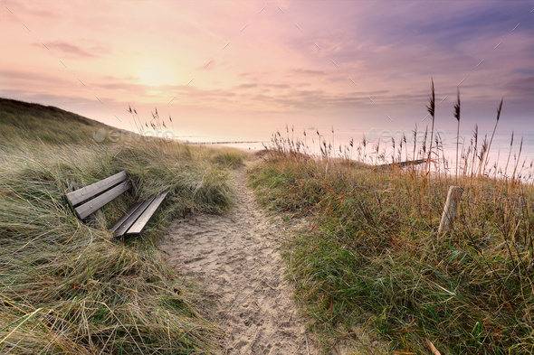 wooden bench by path to North sea coast - Stock Photo - Images