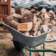 Firewood in a wheelbarrow - PhotoDune Item for Sale
