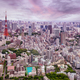 Tokyo skyline at dusk - PhotoDune Item for Sale