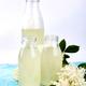Kombucha tea with elderflower flower on blue background - PhotoDune Item for Sale