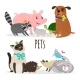 Cartoon Character Groups of Vector Pets Isolated - GraphicRiver Item for Sale