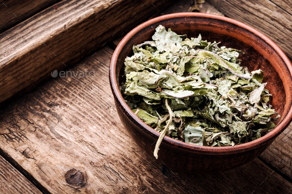Dry leafs of coltsfoot - Stock Photo - Images