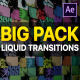 Liquid Transitions Big Pack - VideoHive Item for Sale