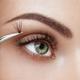 Female eye with long false eyelashes - PhotoDune Item for Sale
