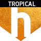 Tropical Pop Music