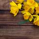Yellow daffodil - PhotoDune Item for Sale