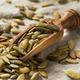 Organic Roasted Pumpkin Seed Pepitas - PhotoDune Item for Sale