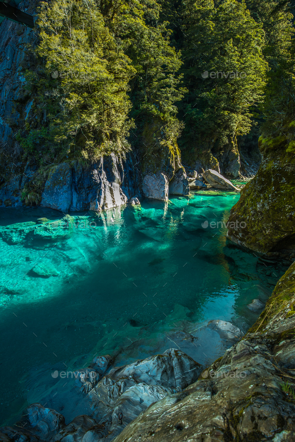 Famous attraction - Blue Pools, Haast Pass,  New Zealand, South - Stock Photo - Images