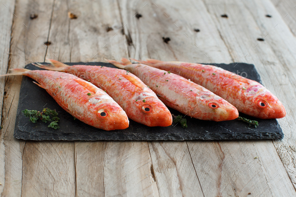 Fresh raw surmullet fish - Stock Photo - Images
