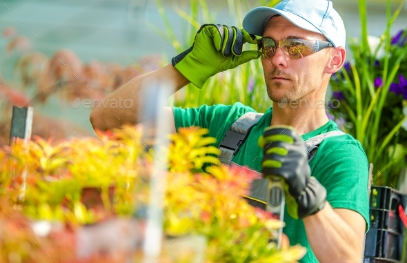 Garden Store Worker in His 30s - Stock Photo - Images