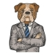 Bulldog Businessman Color Engraving Vector - GraphicRiver Item for Sale