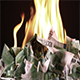 Burning One Hundred Euro Banknotes - VideoHive Item for Sale