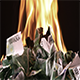 Burning One Hundred Euro Banknotes Rotate - VideoHive Item for Sale