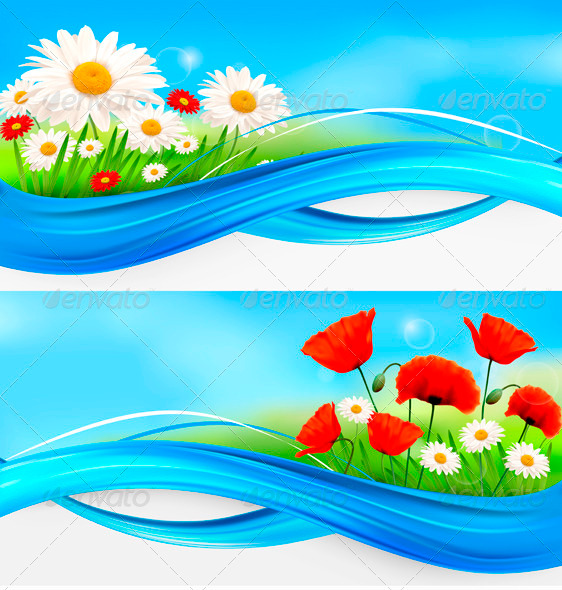 Flower Banners with Red Poppies and Daisies.  - Backgrounds Decorative