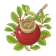 Mate Tea Vector Illustration - GraphicRiver Item for Sale