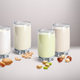 Vegan Nut-Milk in Glass - GraphicRiver Item for Sale