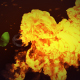 Fire Reveal - VideoHive Item for Sale