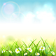 Blue Spring or Summer Nature Background with Grass and Flowers - GraphicRiver Item for Sale