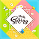 Colorful Background and Text Hello Spring - GraphicRiver Item for Sale