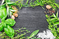Frame from herbs and spices on black board - PhotoDune Item for Sale