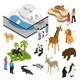 Zoo People Isometric Set - GraphicRiver Item for Sale