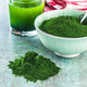 Chlorella or green barley. Detox superfood. - PhotoDune Item for Sale