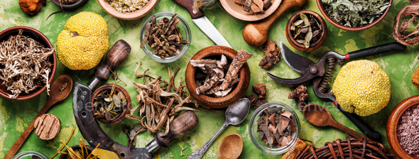 Healing roots and herbs - Stock Photo - Images
