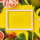 tropical fruits and plants and white frame for your text on yellow background2-4929 - PhotoDune Item for Sale