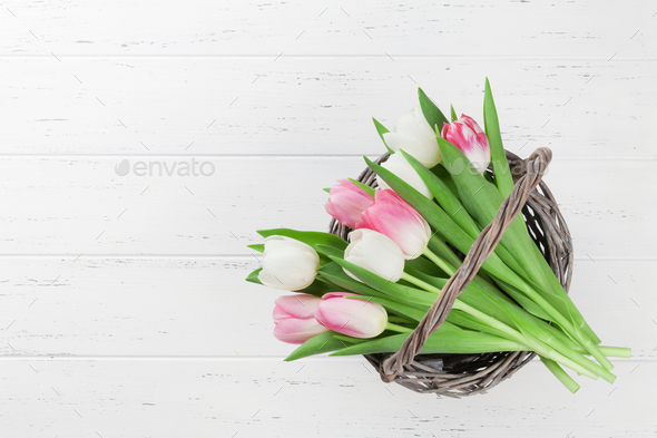 Colorful tulips flower bouquet - Stock Photo - Images