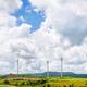 Landscape windmills field - PhotoDune Item for Sale