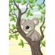Koala on a Tree - GraphicRiver Item for Sale