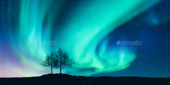 Aurora borealis and silhouette of the trees on the hill - Stock Photo - Images