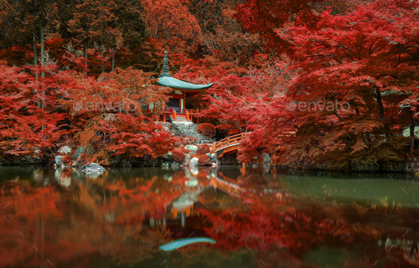 autumn foliage at Daigo ji temple, Kyoto, Japan - Stock Photo - Images