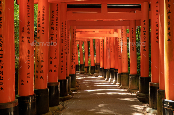 Torii gates in Fushimi Inari in Kyoto - Stock Photo - Images