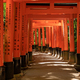 Torii gates in Fushimi Inari in Kyoto - PhotoDune Item for Sale