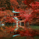 autumn foliage at Daigo ji temple, Kyoto, Japan - PhotoDune Item for Sale