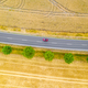 Aerial view of a country road with a red car - PhotoDune Item for Sale