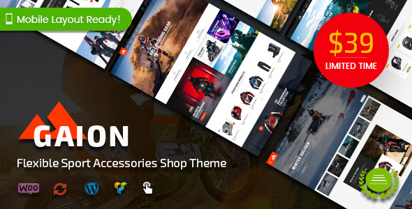 Sport Accessories Shop WordPress WooCommerce Theme