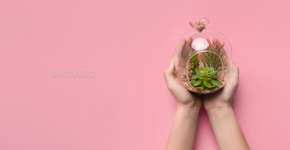 Woman holding succulent garden in glass terrarium - Stock Photo - Images